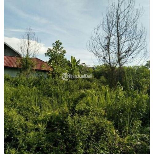 Tanaha di Jalan Hiu Putih IX Perumahan BTN SHM Harga Nego - Palangkaraya