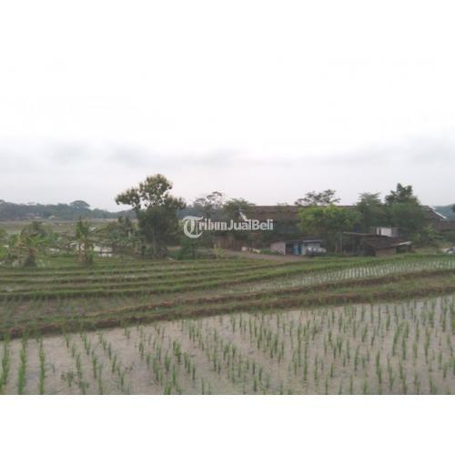 Investasi Tanah Sawah Pemandangan Cantik di Kabupaten Semarang Luas 1403m2 - Jawa Tengah