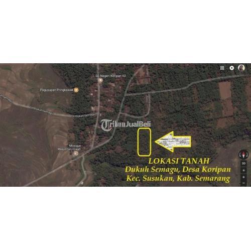 Investasi Tanah Perkebunan Produktif di Kabupaten Semarang Harga Murah - Jawa Tengah