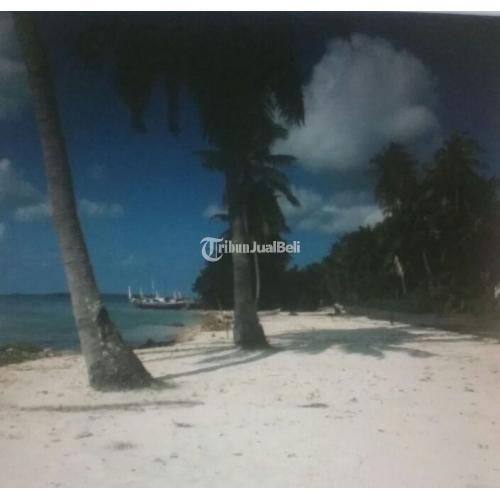 Tanah Strategis di Tepi Pantai Pasir Putih Karimunjawa Strategis Harga Murah - Jepara