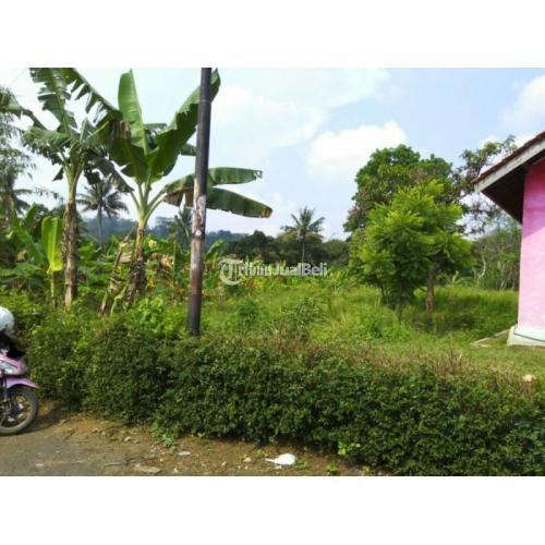 Tanah Kavling Luas Strategis Harga Murah Normal SHM Bebas Banjir - Semarang