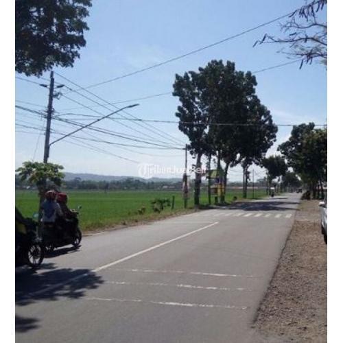 Jual Tanah Sawah Profduktif di Daerah Maos Cocok untuk Investasi - Cilacap