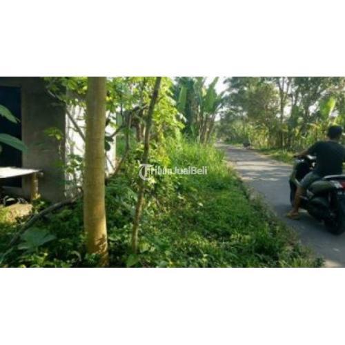 Tanah Sawah Produktif di Saerah Wedomartani Dekat Wahana Jogja Bay Sudah SHM - Sleman