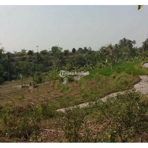 Jual Tanah Status SHM di Desa Gekbrong Harga Nego Bebas Sengketa - Bogor
