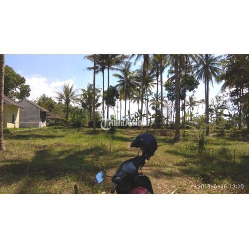 Jual Tanah Kavling Nyaman dan Damai Bonus Pepohonan Kelapa - Semarang