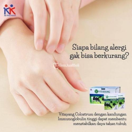 Vitayang Colostrum Kandungan Immunoglobulin Tinggi - Bandung