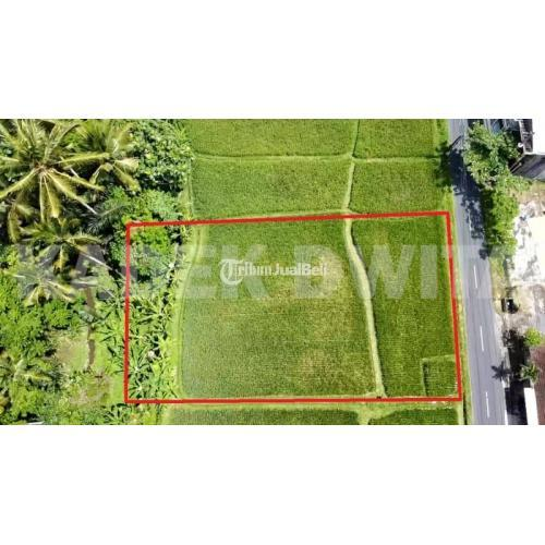 Jual Tanah Murah Los Sungai d Jalan Tirta Tawas Junjungan Ubud - Bali