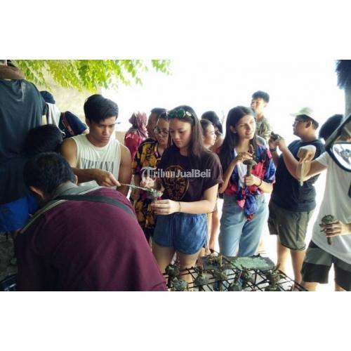 Promo Paket Wisata Lombok 3 Hari 2 Malam Fasilitas Lengkap - Jakarta Timur