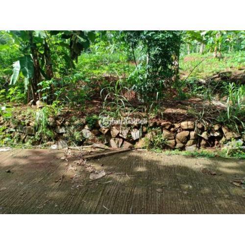 Jual Tanah Subur Cocok Untuk Kebun Durian Mojogedang Karanganyar - Jawa Tengah