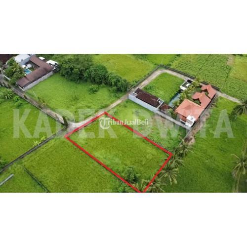 Dijual Tanah 1000m2 Lodtunduh Ubud Bali Lingkungan Villa Tenang Dan Nyaman Di Gianyar Tribunjualbeli Com