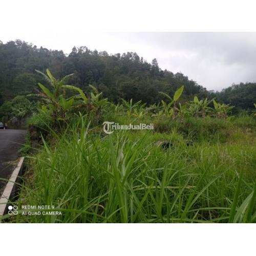 Dijual Tanah 6684m² Bonus Vila Tawangmangu - Karanganyar