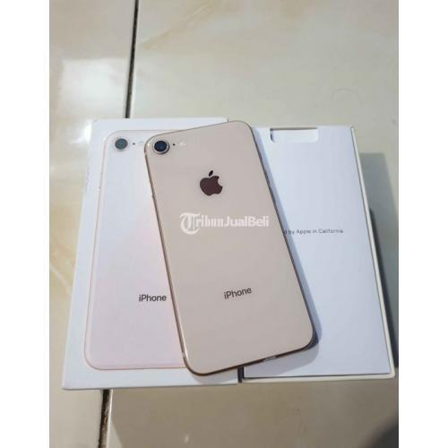 HP Iphone 8 64Gb Bekas Warna Gold Lengkap Icloud Aman Harga Murah - Makassar