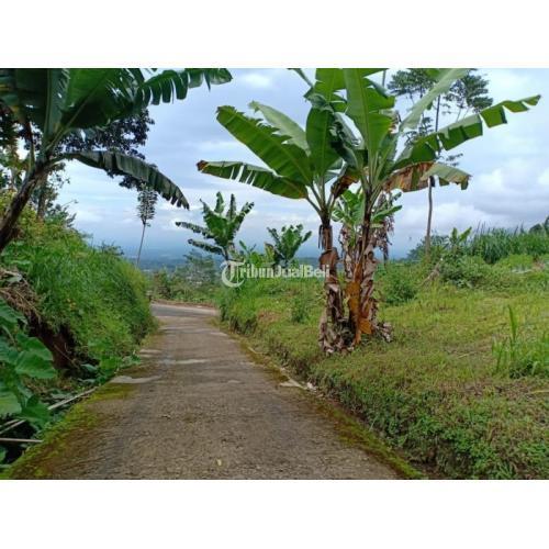 Dijual Tanah Luas 308m2 Strategis Untuk Vila Kemuning Ngargoyoso - Karanganyar