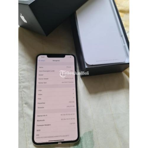 HP Apple Bekas iPhone 11 Pro Max 256GB Silver Like New Normal Harga Murah - Surabaya