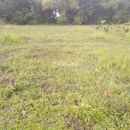 Dijual Tanah Kavling Harga Murah Milik Pribadi Luas Tanah 6x15/90m² - Jombang