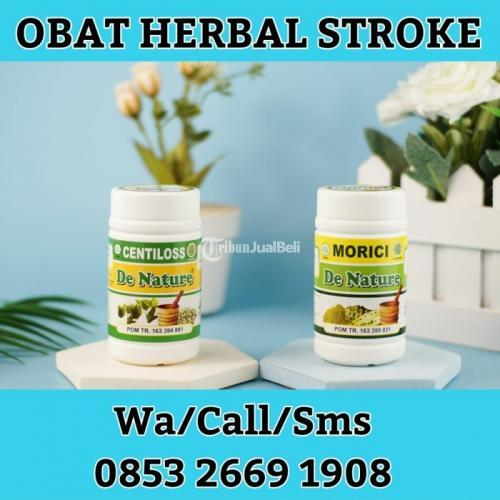 Obat Stroke, Darah Tinggi, Lumpuh. AMPUH Tanpa Efek samping Original - Yogyakarta