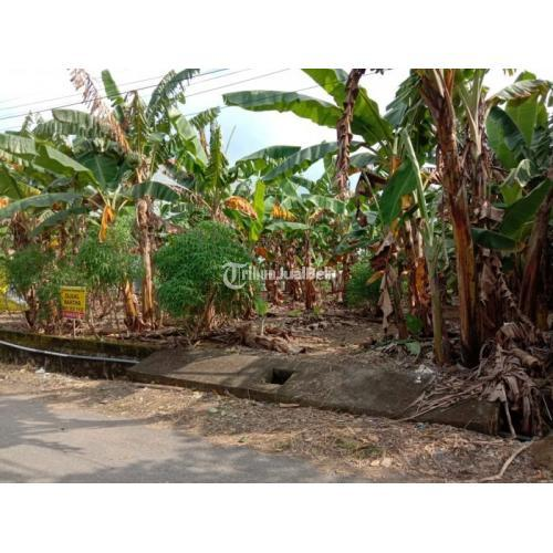 Dijual Tanah Tlogomulyo 504 m² SHM Menuju Wolter Mongisidi - Semarang