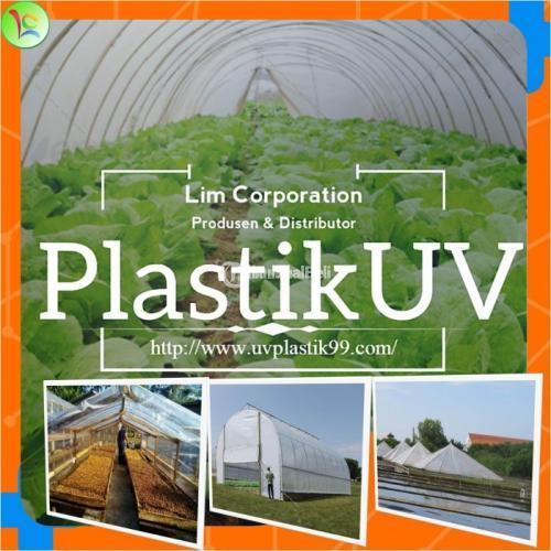 Termurah Plastik UV Untuk Hidroponik & Penjemuran - Sidoarjo