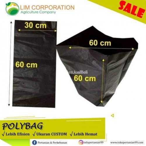 Polybag KW Super 60 X 60 Untuk Tanam Jahe - Sidoarjo