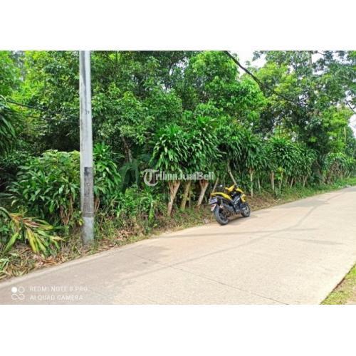 Jual Tanah 1278m2 SHM Harga Nego di Cisauk - Tangerang