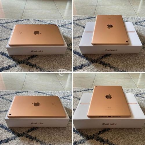 Tablet iPad Mini 5 MUQY2 Gold 64GB Wifi Mulus Bekas Garansi On - Bandung