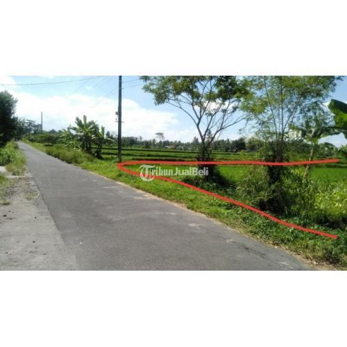 Dijual Tanah Taraman View Merapi 1,5Km Timur Jl Kaliurang Km10.Akses Jl Aspal - Jogja