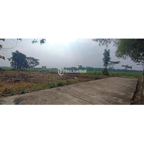 Dijual Tanah Murah Legalitas SHM Luas 60-70 m2 Lokasi Dekat Fasilitas Umum - Purworejo