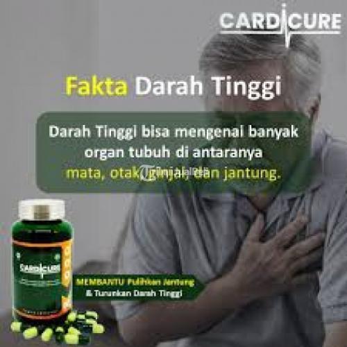 Cardicure Obat Jantung Hipertensi Herbal Ampuh - Bau-bau Sulawesi