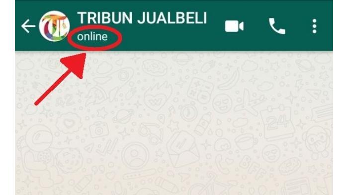 Ingin Sembunyikan Status Online Pada WhatsApp? Ikuti Cara Berikut