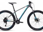 Cari Sepeda Bekas? 3 Pilihan MTB Polygon Kondisi Seken di Beberapa Wilayah, Cek Harganya