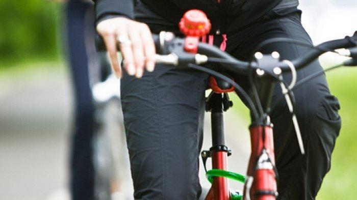 Hobi Gowes? Berikut 3 Pilihan Sepeda Gunung Polygon dan United Kondisi Seken di Berbagai Wilayah
