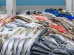 Jenis Ikan yang Tak Boleh Dimakan Anak-anak, Ahli Ungkap Bahayanya