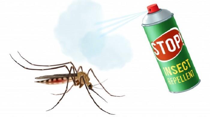 Masih Sering Pakai Obat Nyamuk saat di Rumah? Ternyata Ini Bisa Pemicu Leukimia Loh