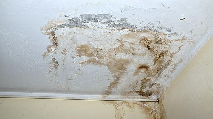 Bikin Tampilan Kotor, Begini Cara Bersihkan Plafon Rumah yang Benar